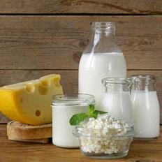 Los productos lácteos y quesos